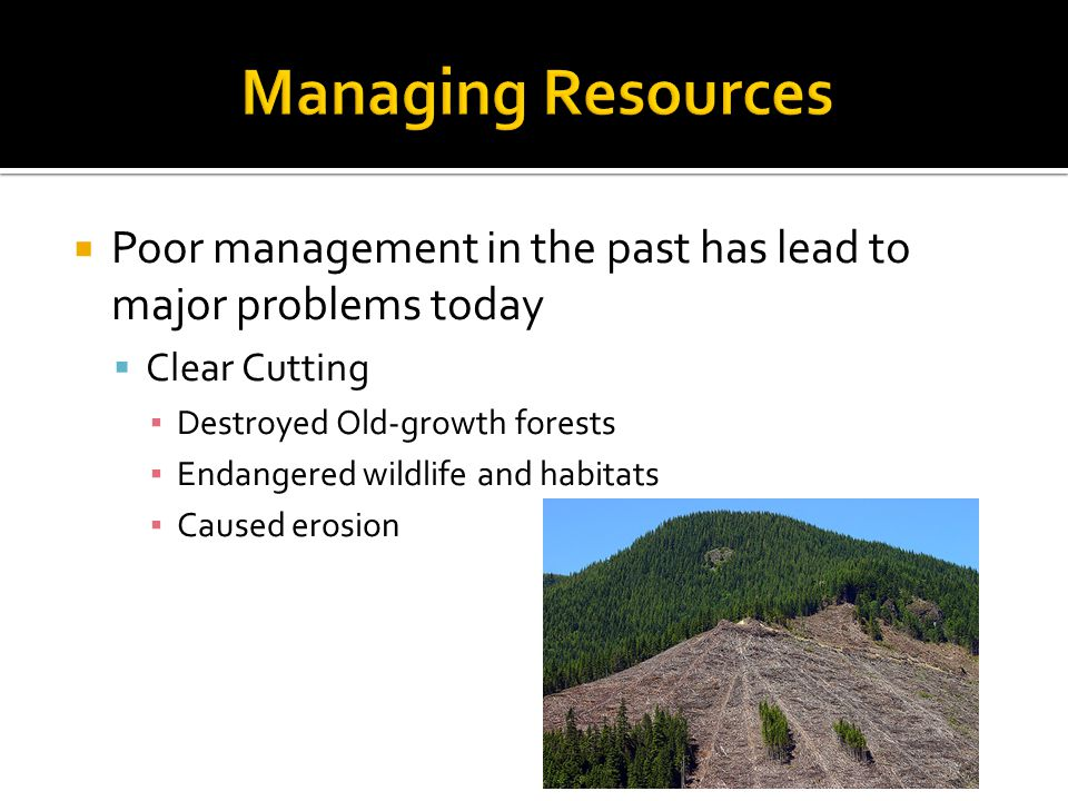 Poor management in the past has lead to major problems today Clear Cutting Destroyed Old-growth forests Endangered wildlife and habitats Caused erosion