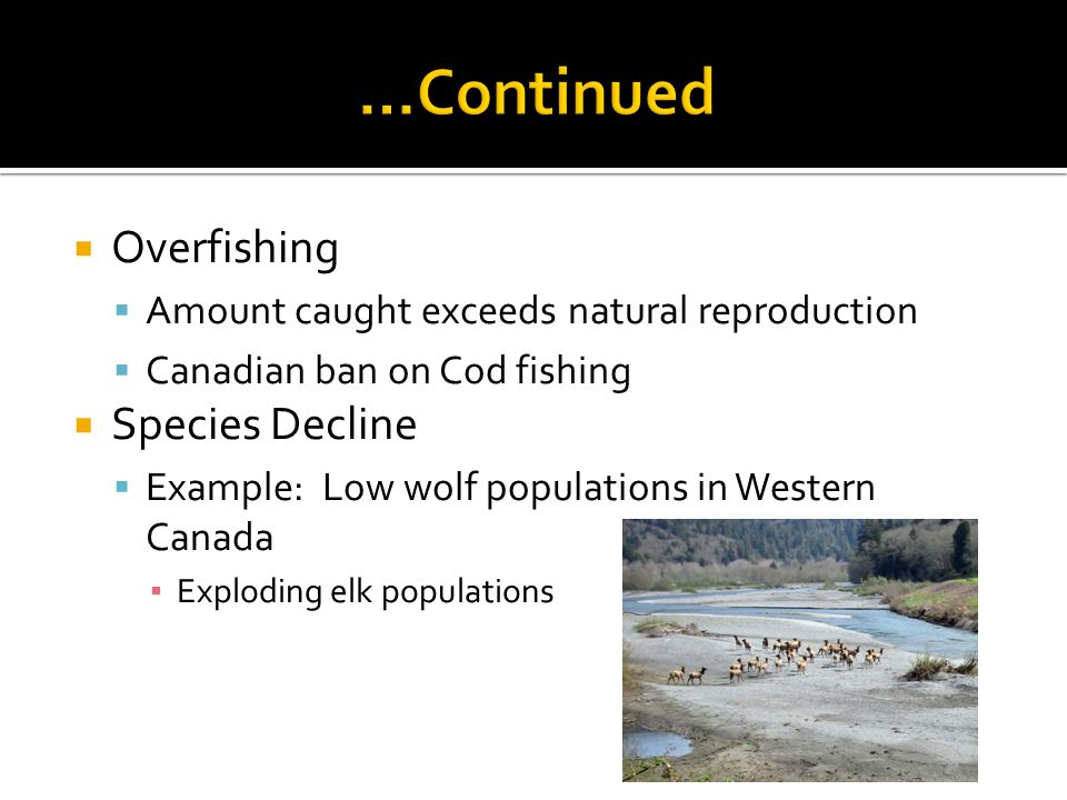 Overfishing Amount caught exceeds natural reproduction Canadian ban on Cod fishing Species Decline Example: Low wolf populations in Western Canada Exploding elk populations
