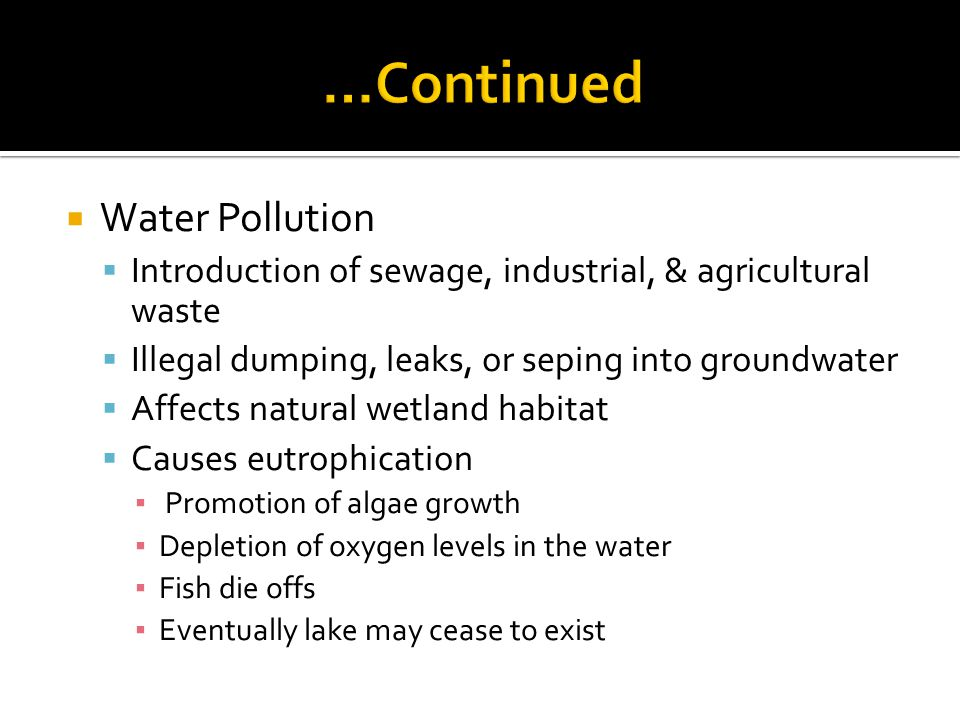 Water Pollution Introduction of sewage, industrial, & agricultural waste Illegal dumping, leaks, or seping into groundwater Affects natural wetland habitat Causes eutrophication Promotion of algae growth Depletion of oxygen levels in the water Fish die offs Eventually lake may cease to exist