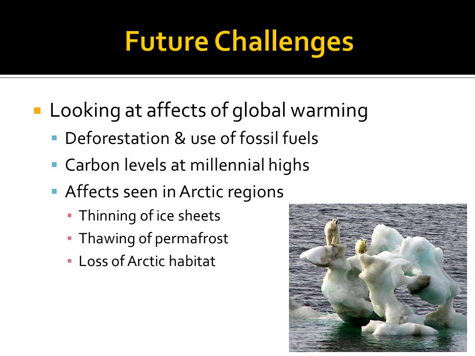 Looking at affects of global warming Deforestation & use of fossil fuels Carbon levels at millennial highs Affects seen in Arctic regions Thinning of ice sheets Thawing of permafrost Loss of Arctic habitat