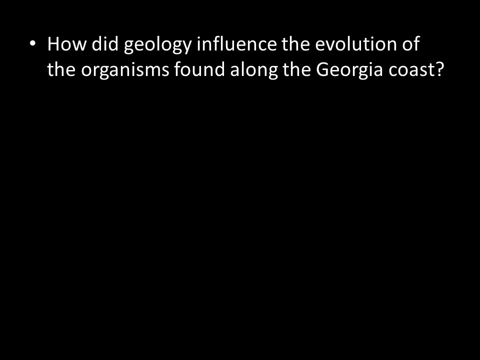 How did geology influence the evolution of the organisms found along the Georgia coast