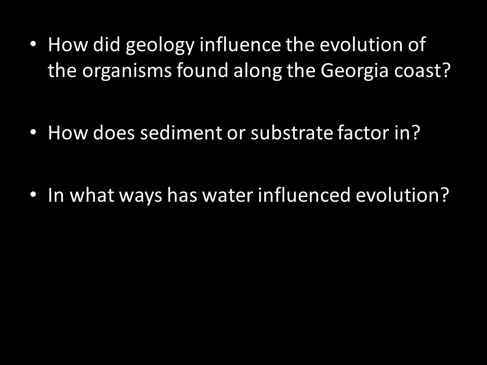 How did geology influence the evolution of the organisms found along the Georgia coast.