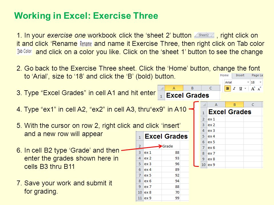 Working in Excel: Exercise Three 1.
