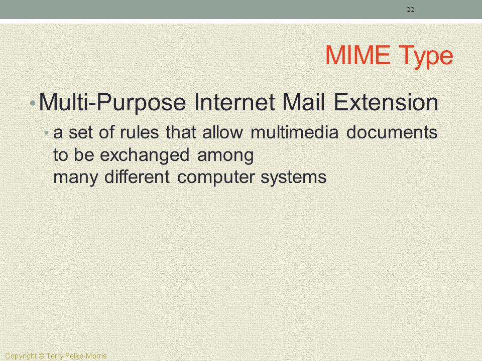 MIME Type Multi-Purpose Internet Mail Extension a set of rules that allow multimedia documents to be exchanged among many different computer systems 2