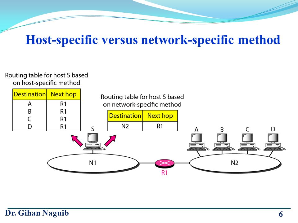 Dr. Gihan Naguib 6 Host-specific versus network-specific method