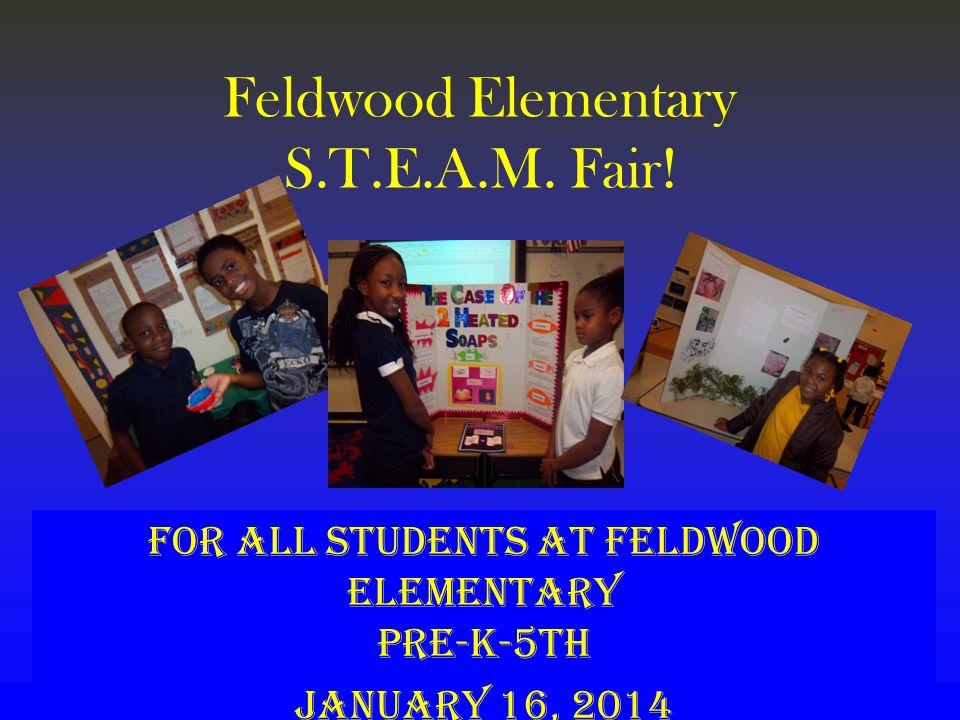 Feldwood Elementary S.T.E.A.M. Fair.