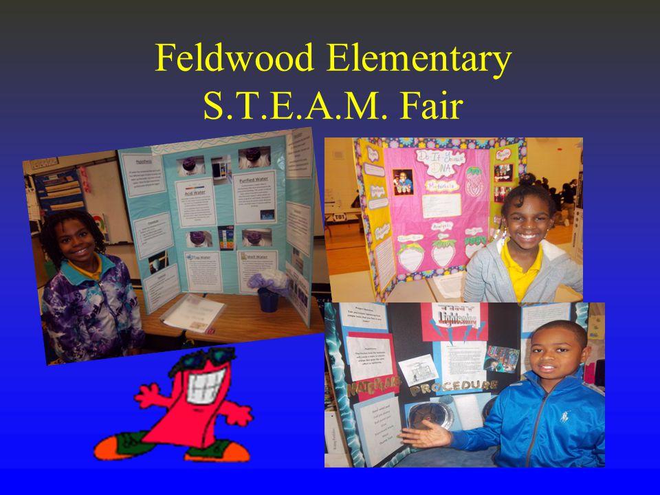 Feldwood Elementary S.T.E.A.M. Fair
