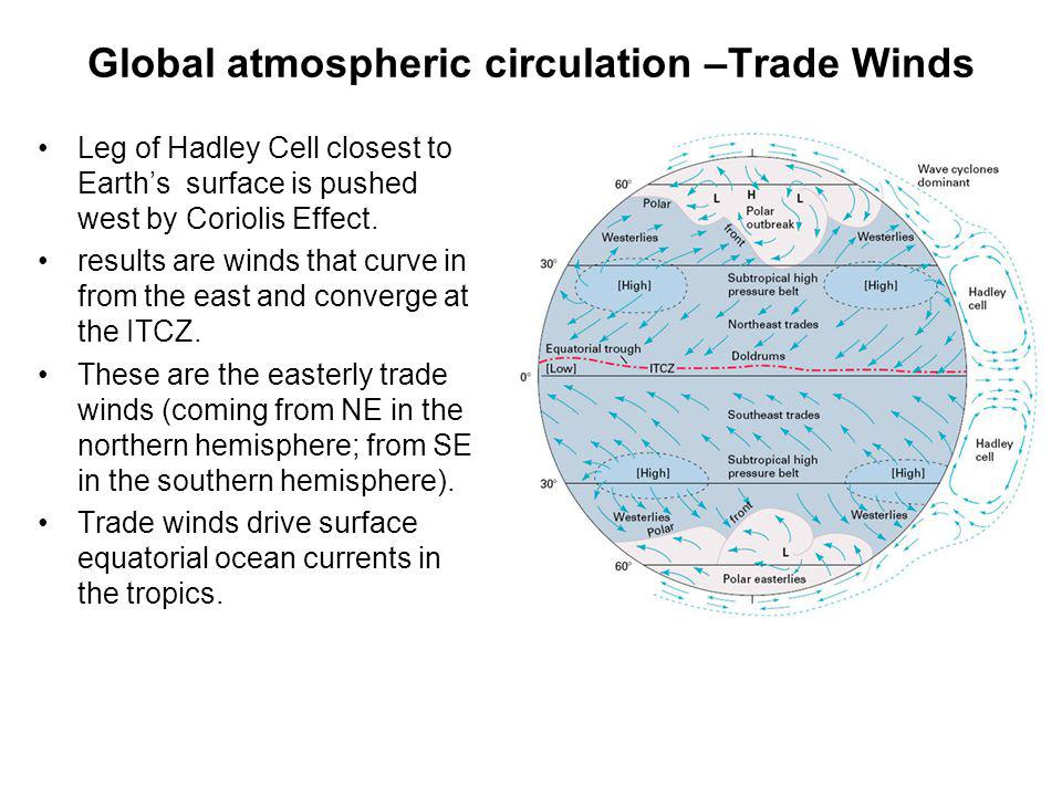 Global atmospheric circulation –Trade Winds Leg of Hadley Cell closest to Earths surface is pushed west by Coriolis Effect. results are winds that cur