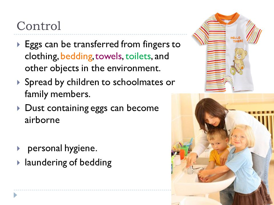 Control Eggs can be transferred from fingers to clothing, bedding, towels, toilets, and other objects in the environment. Spread by children to school