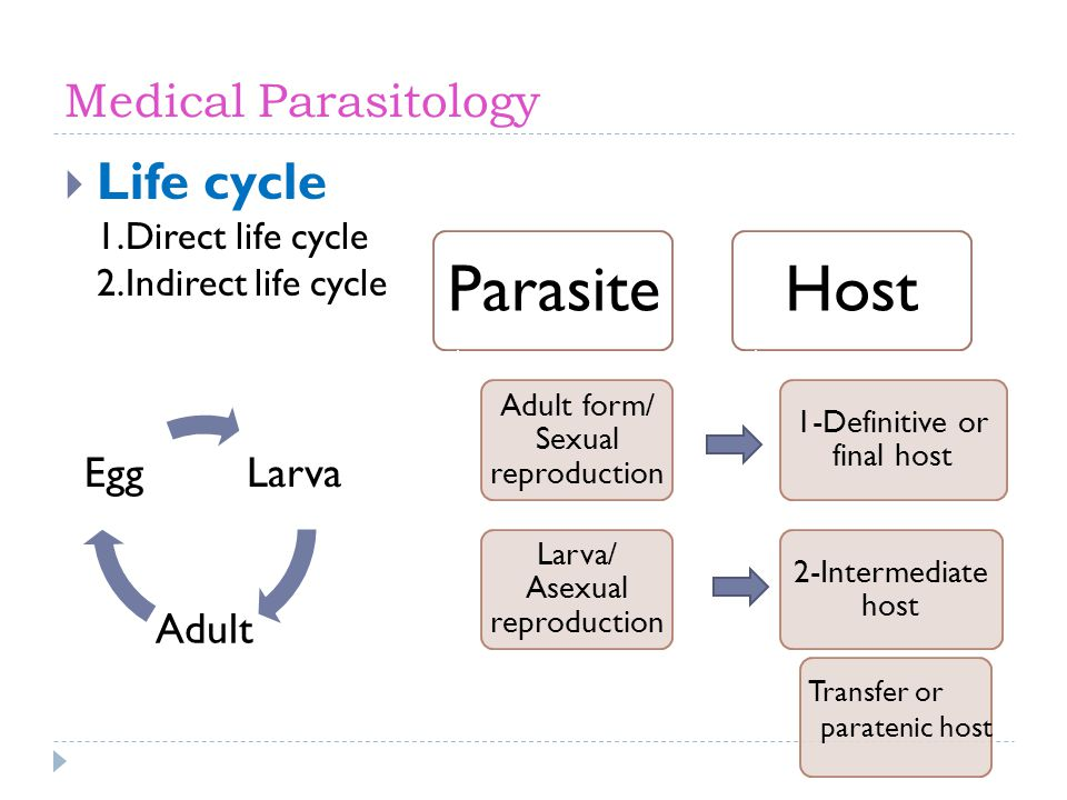Medical Parasitology Life cycle 1.Direct life cycle 2.Indirect life cycle Larva Adult Egg Transfer or paratenic host