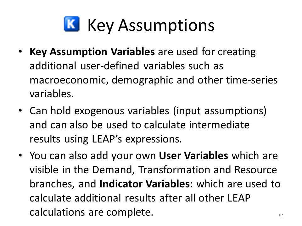 Key Assumptions Key Assumption Variables are used for creating additional user-defined variables such as macroeconomic, demographic and other time-ser
