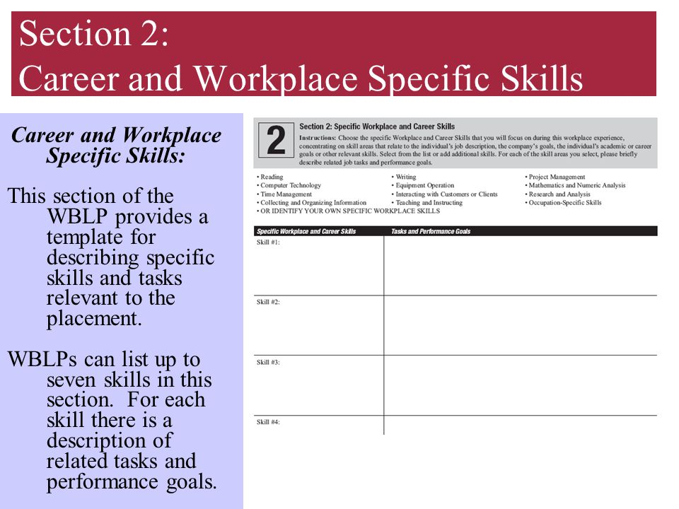 Section 2: Career and Workplace Specific Skills Career and Workplace Specific Skills: This section of the WBLP provides a template for describing specific skills and tasks relevant to the placement.