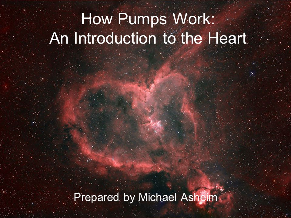 How Pumps Work: An Introduction to the Heart Prepared by Michael Asheim