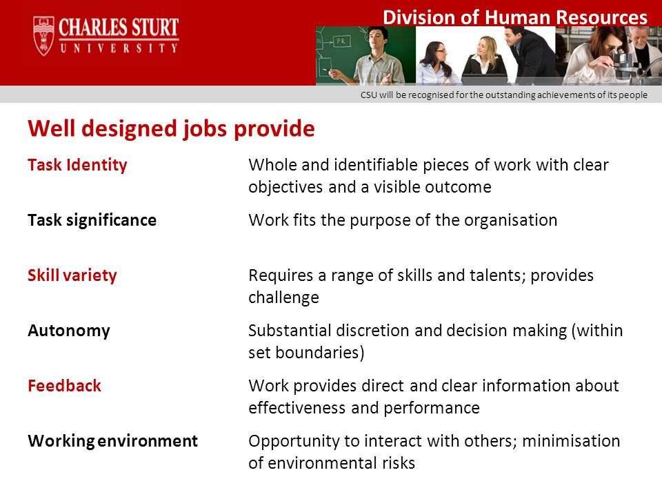 Division of Human Resources CSU will be recognised for the outstanding achievements of its people 1.All jobs have clearly defined activities, responsibilities and accountabilities which contribute to the overall objectives of the organisation Issues to be considered: What functions/activities are to be undertaken.