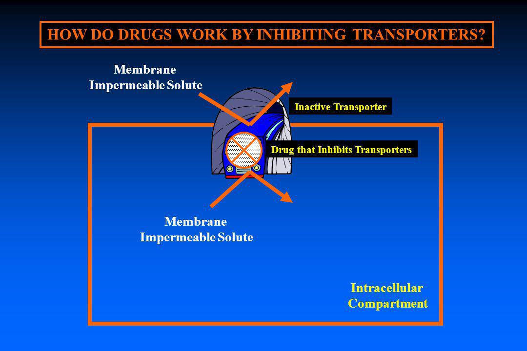 HOW DO DRUGS WORK BY INHIBITING TRANSPORTERS? Inactive Transporter Intracellular Compartment Membrane Impermeable Solute Membrane Impermeable Solute D