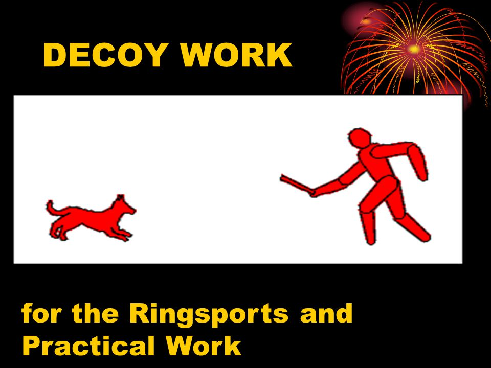 DECOY WORK for the Ringsports and Practical Work