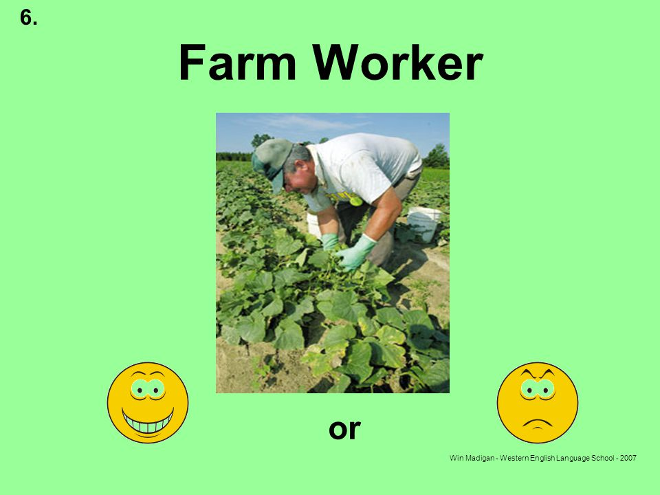 Win Madigan - Western English Language School - 2007 Farm Worker or 6.
