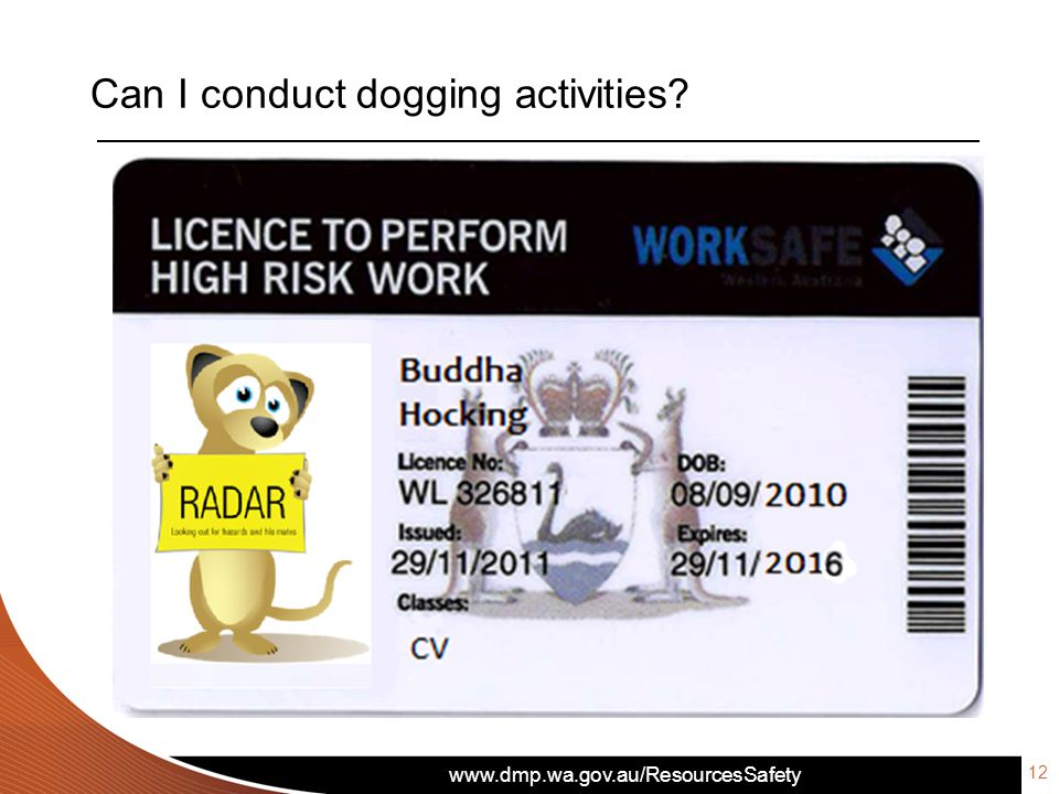 www.dmp.wa.gov.au/ResourcesSafety Can I conduct dogging activities? 12