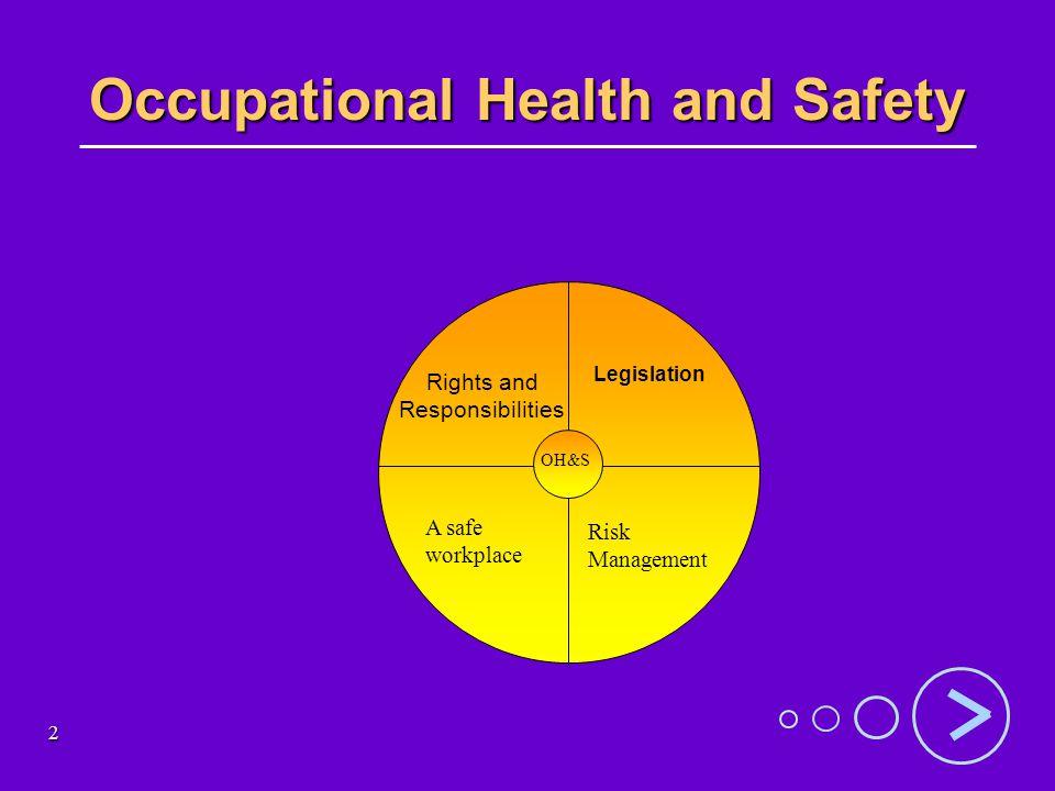 13 Types of hazards Types of hazards: Types of hazards: –physical eg.