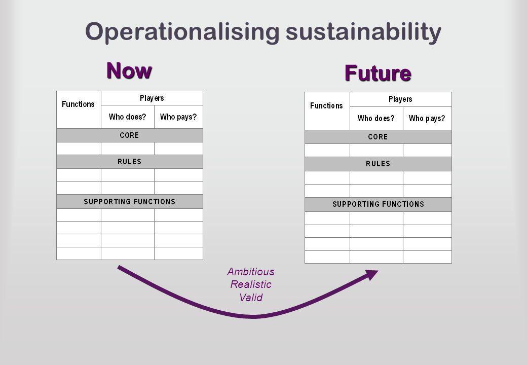 Operationalising sustainabilityNow Future Ambitious Realistic Valid
