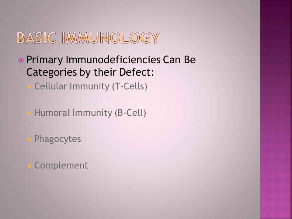Bone Marrow B-lymphocytes Stem Cell Plasma cells Immunoglobulins T- cells