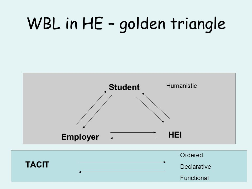 WBL in HE – golden triangle Student Employer HEI TACIT Ordered Declarative Functional Humanistic