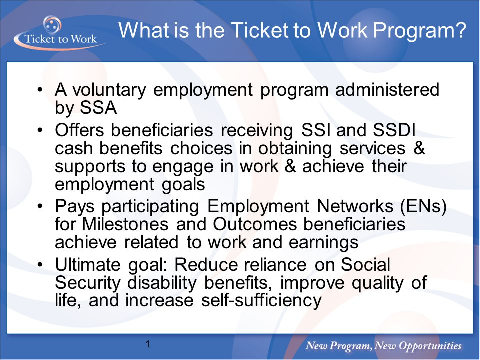 What is the Ticket to Work Program.
