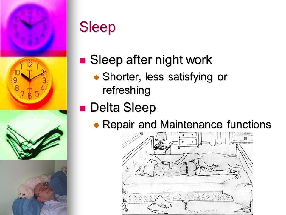 Sleep Sleep after night work Sleep after night work Shorter, less satisfying or refreshing Shorter, less satisfying or refreshing Delta Sleep Delta Sl
