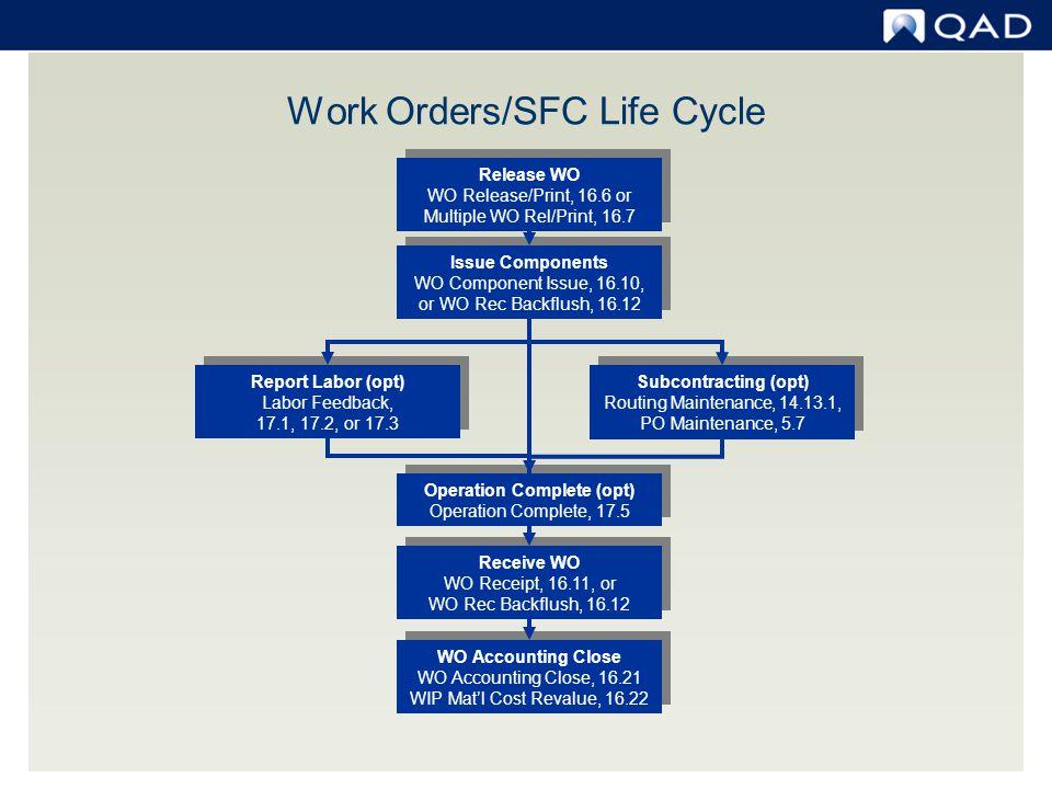 Work Order Cost Report