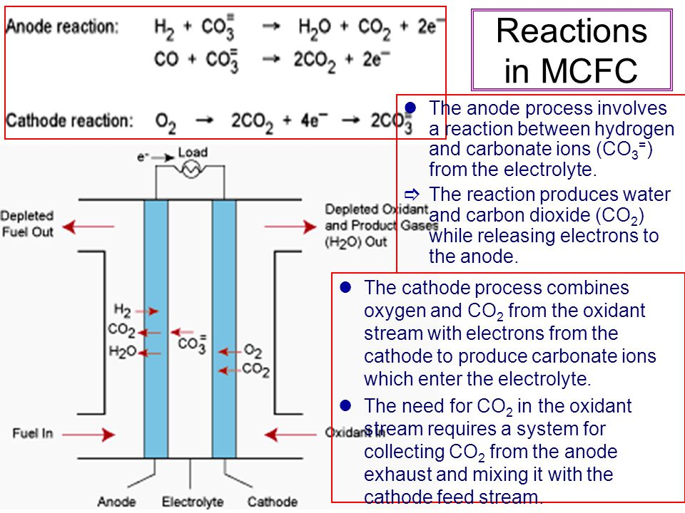Reactions in MCFC The anode process involves a reaction between hydrogen and carbonate ions (CO 3 = ) from the electrolyte. The reaction produces wate