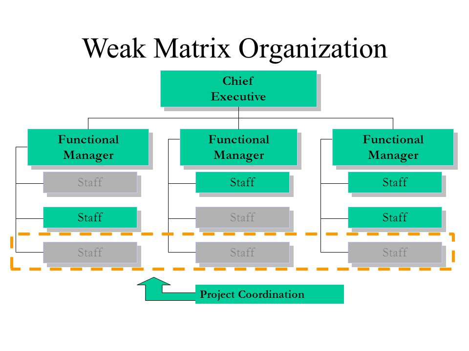 Weak Matrix Organization Project Coordination Staff Chief Executive Functional Manager