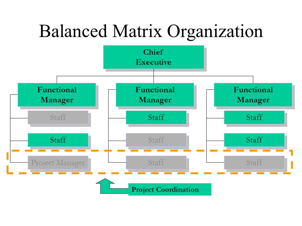 Balanced Matrix Organization Project Coordination Staff Project Manager Staff Chief Executive Functional Manager