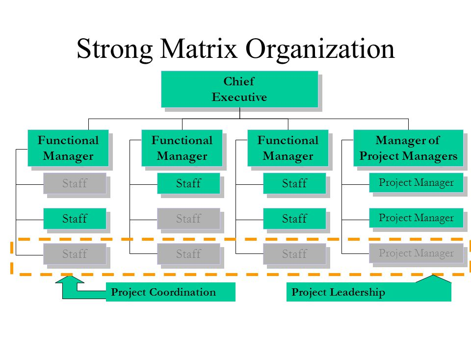 Strong Matrix Organization Project Coordination Staff Project Manager Chief Executive Functional Manager Manager of Project Managers Project Leadershi