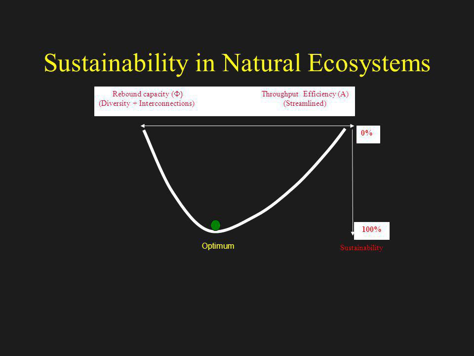 Sustainability in Natural Ecosystems Optimum Rebound capacity ( Throughput Efficiency (A) (Diversity + Interconnections) (Streamlined) Sustainability