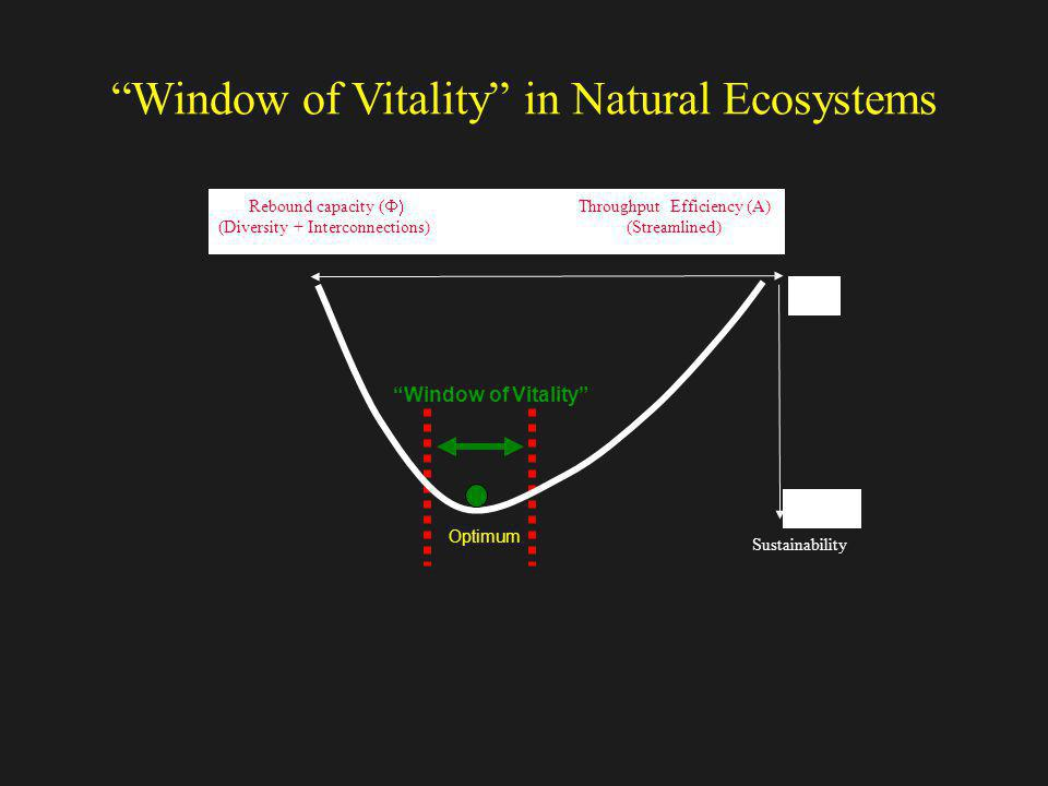 Window of Vitality in Natural Ecosystems Optimum Window of Vitality Rebound capacity ( Throughput Efficiency (A) (Diversity + Interconnections) (Strea