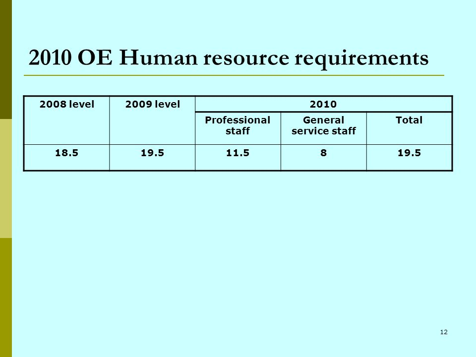 12 2010 OE Human resource requirements 2008 level2009 level2010 Professional staff General service staff Total 18.519.511.5819.5