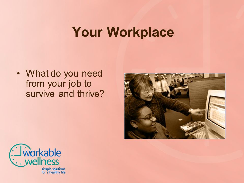 Your Workplace What do you need from your job to survive and thrive