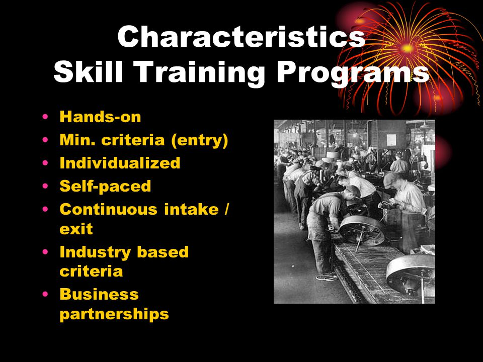 Characteristics Skill Training Programs Hands-on Min. criteria (entry) Individualized Self-paced Continuous intake / exit Industry based criteria Busi