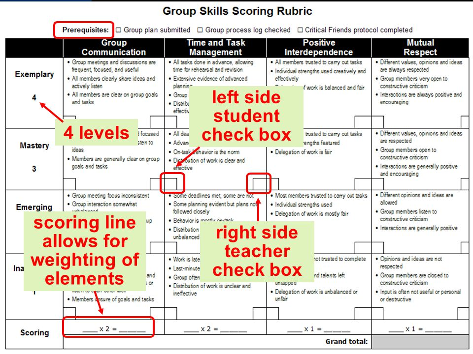 4 levels left side student check box right side teacher check box scoring line allows for weighting of elements