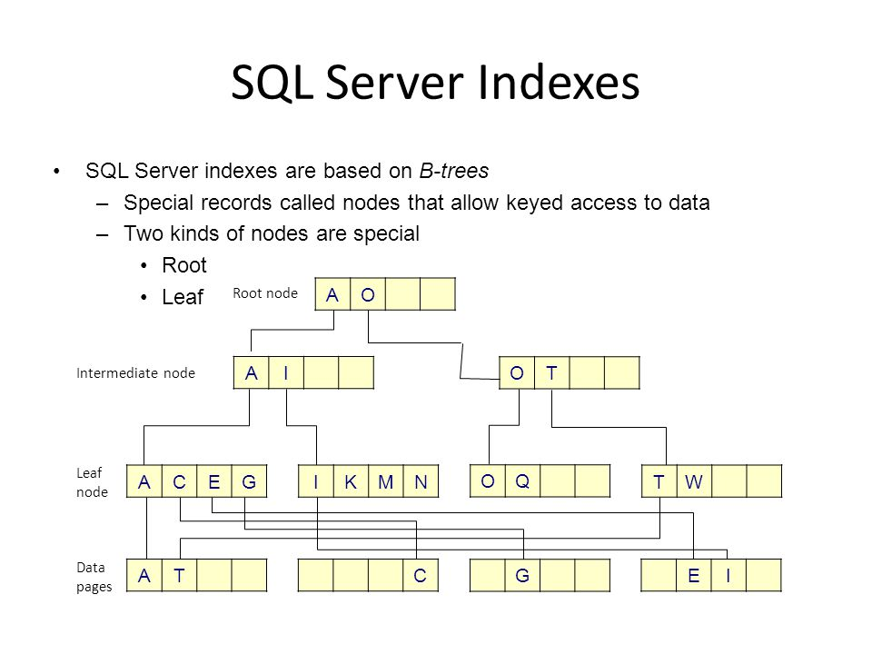 SQL Server B-Tree Rules Root and intermediate nodes point only to other nodes Only leaf nodes point to data The number of nodes between the root and any leaf is the same for all leaves A node always contains between K and K/2 branches, where K is the branching factor –Branching factor is the number of keys in the node B-trees are always sorted The tree will be maintained during insertion, deletion, and updating so that these rules are met –When records are inserted or updated, nodes may split –When records are deleted, nodes may be c ollapsed