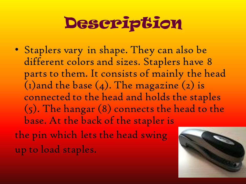 Description Staplers vary in shape. They can also be different colors and sizes. Staplers have 8 parts to them. It consists of mainly the head (1)and