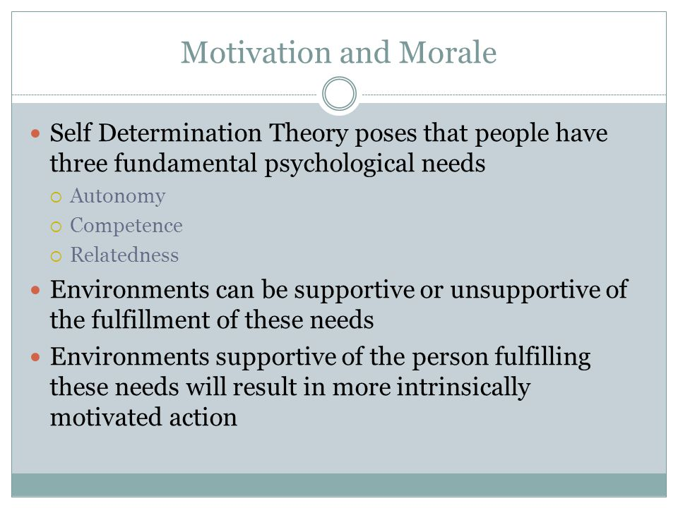 Motivation and Morale Self Determination Theory poses that people have three fundamental psychological needs Autonomy Competence Relatedness Environme
