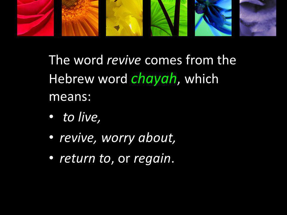 The word revive comes from the Hebrew word chayah, which means: to live, revive, worry about, return to, or regain.