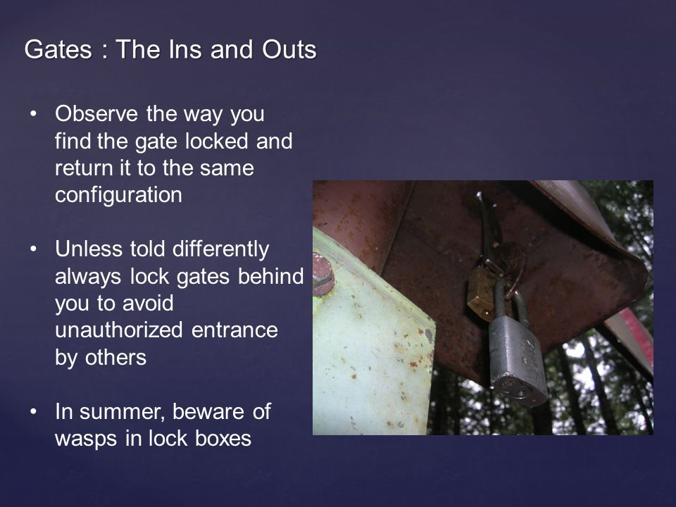 Gates : The Ins and Outs Observe the way you find the gate locked and return it to the same configuration Unless told differently always lock gates behind you to avoid unauthorized entrance by others In summer, beware of wasps in lock boxes