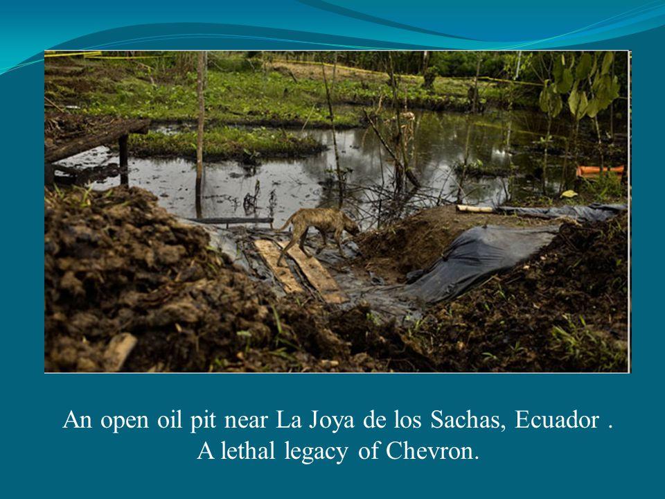 An open oil pit near La Joya de los Sachas, Ecuador. A lethal legacy of Chevron.