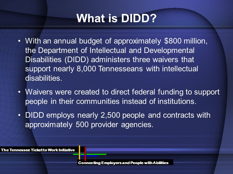 With an annual budget of approximately $800 million, the Department of Intellectual and Developmental Disabilities (DIDD) administers three waivers that support nearly 8,000 Tennesseans with intellectual disabilities.