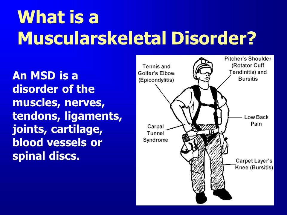 What is a Muscularskeletal Disorder? An MSD is a disorder of the muscles, nerves, tendons, ligaments, joints, cartilage, blood vessels or spinal discs