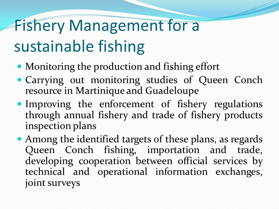 Fishery Management for a sustainable fishing Monitoring the production and fishing effort Carrying out monitoring studies of Queen Conch resource in Martinique and Guadeloupe Improving the enforcement of fishery regulations through annual fishery and trade of fishery products inspection plans Among the identified targets of these plans, as regards Queen Conch fishing, importation and trade, developing cooperation between official services by technical and operational information exchanges, joint surveys