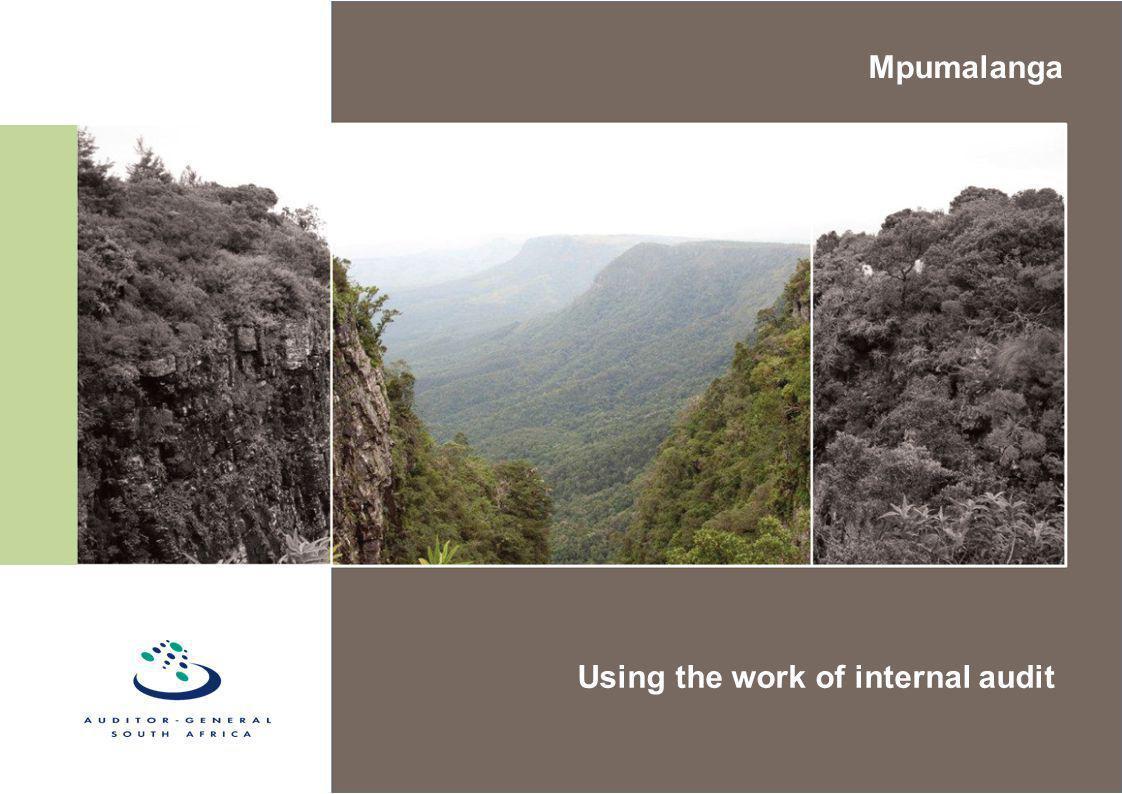 Using the work of internal audit Mpumalanga