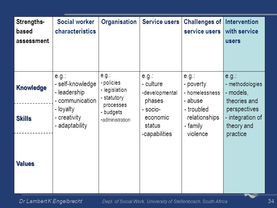 Strengths- based assessment Social worker characteristics OrganisationService users Challenges of service users Intervention with service usersKnowled